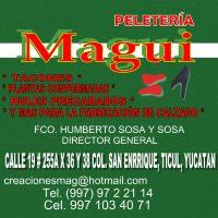 TICUL :  PELETERIA MAGUI