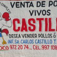 TICUL :  POLLOS CASTILLO