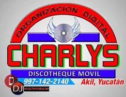 ORGANIZACIÓN DIGITAL CHAR5LYS
