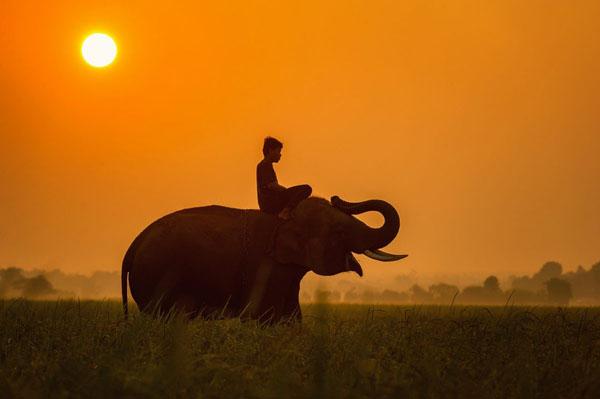 CURIOSIDADES : Según la cultura hindú estas son las 7 cosas que nunca debes divulgar a nadie