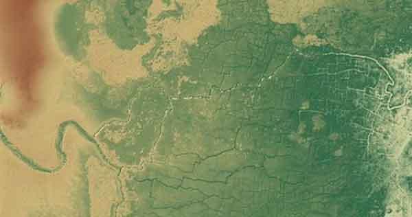 Mayas podrían haber anticipado efectos del Antropoceno de bosques tropicales, en Belice